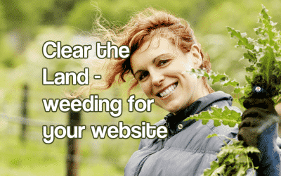 Clear the Land – weeding for your website