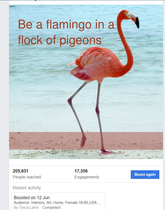 flamingo post stats