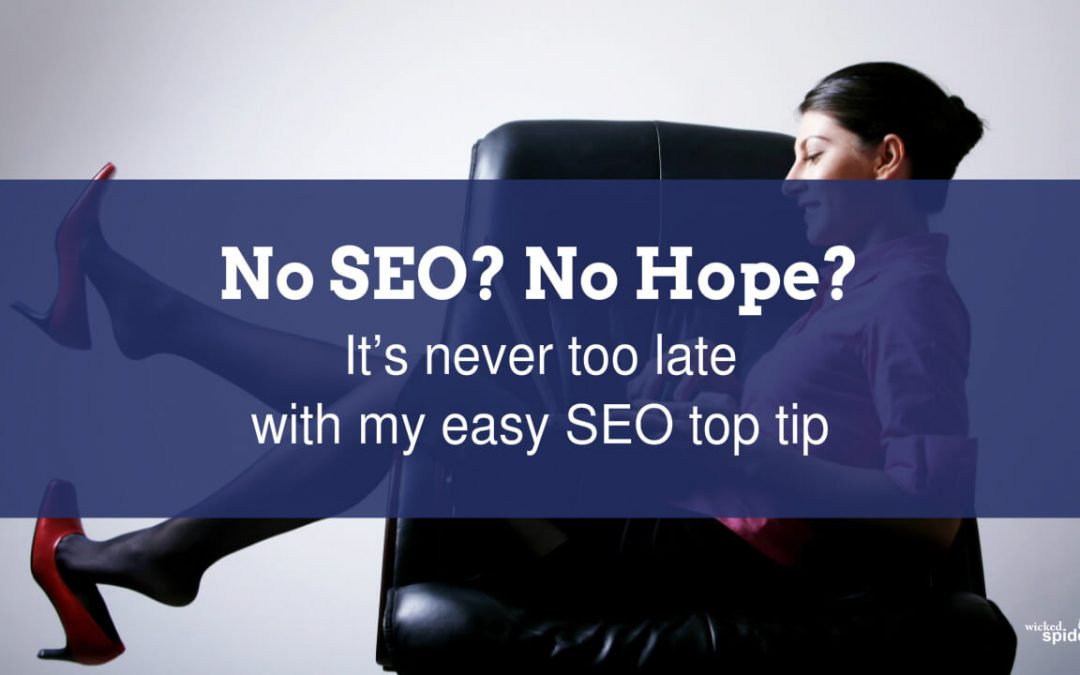 No SEO? No Hope?